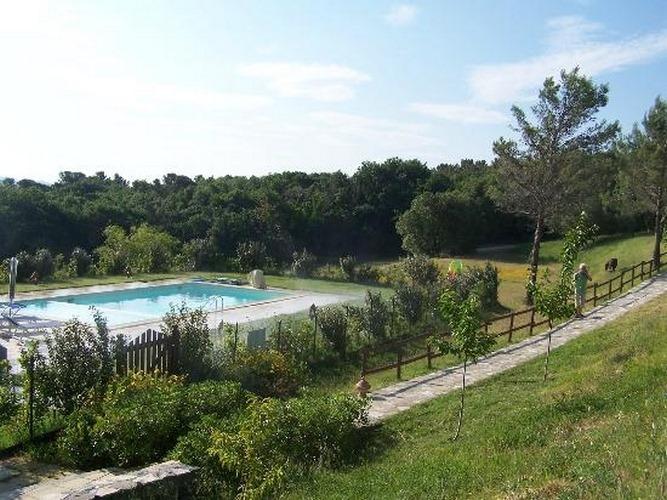 Erba di campo castellaccio livorno for Cantagrillo piscine